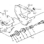 Transplant clutch shaft